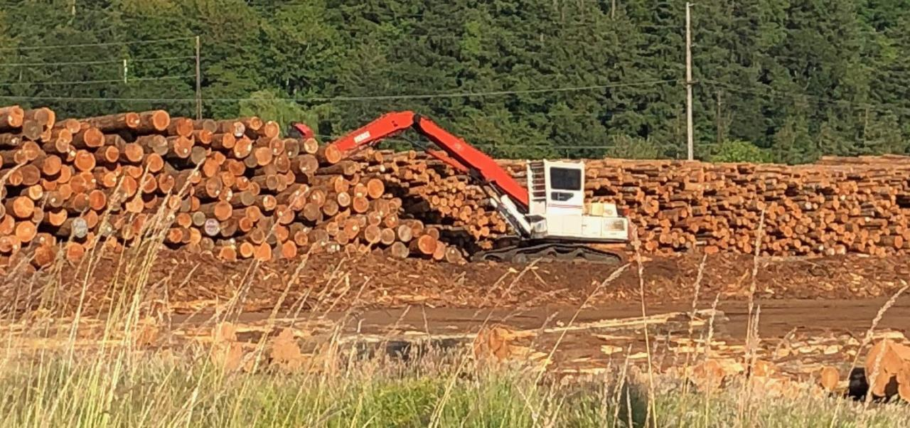 Log Yard - HP